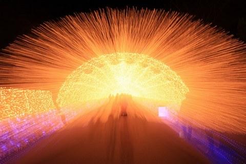 2_光の回廊2.jpg