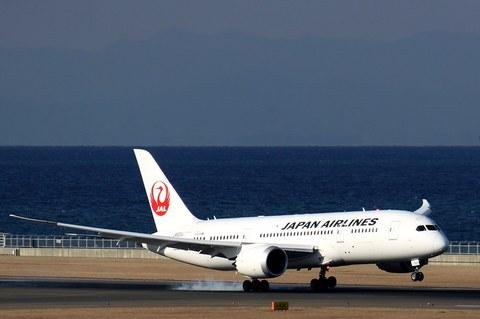 JAL_B787_3.JPG