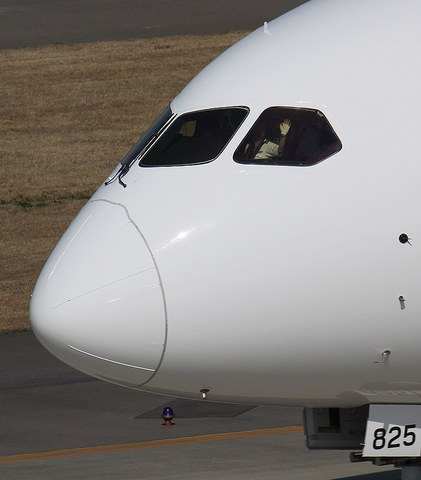 JAL_B787_4.JPG