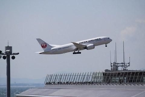 JAL_B787_5.JPG