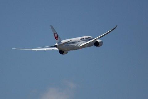 JAL_B787_6.JPG
